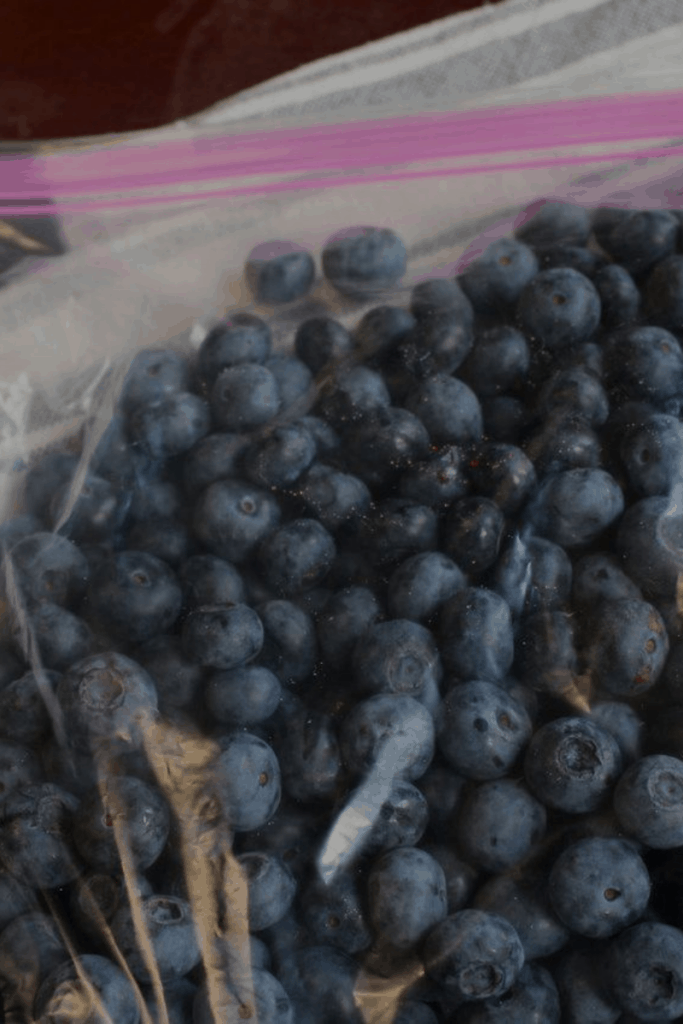 cooking from scratch with fresh organic blueberries